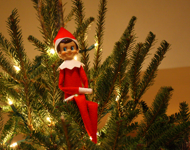 Elf on the Shelf sitting in the Christmas tree