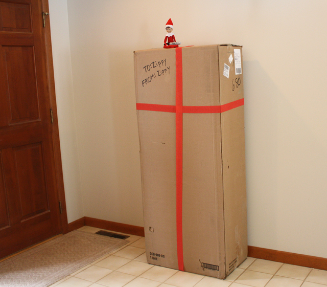 Elf on the Shelf thinks the large box is for him
